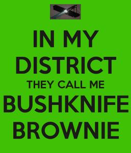 bushknife brownie